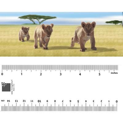 Lion Cubs Bookmark