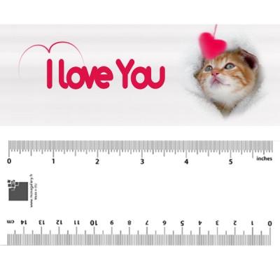 Kitten I Love You