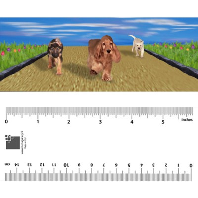 running Dogs Bookmark