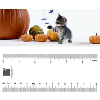 Kitten Playing Bookmark