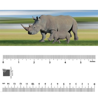 Rhinoceros Bookmark