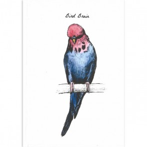 Bird Brains Greeting Cards